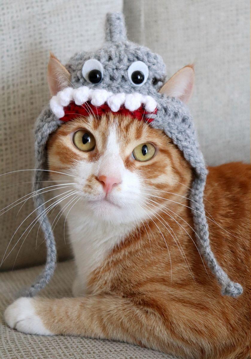 MADE TO ORDER pet costume Shark Cat Hat Crochet