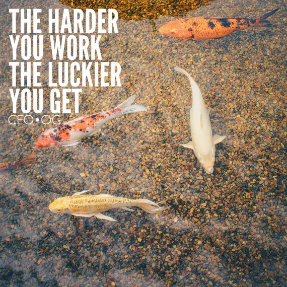 the harder you work the luckier you get koi fish pond