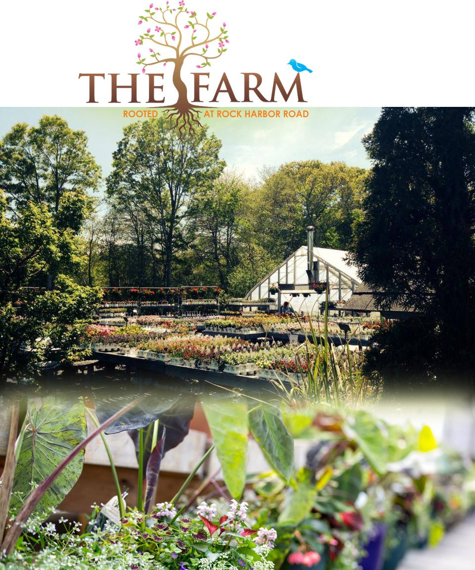 Cape Cod Daily Deal With The Farm In Orleans. Family Run