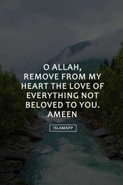 Inspirational Self Motivation Islamic Quotes Tumblr Nusagates