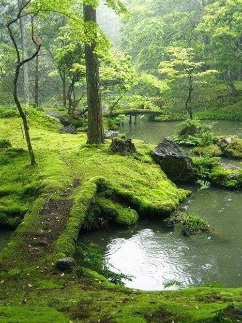 Bridges Park Ireland Fantastic Materials Landscape Scenery Nature