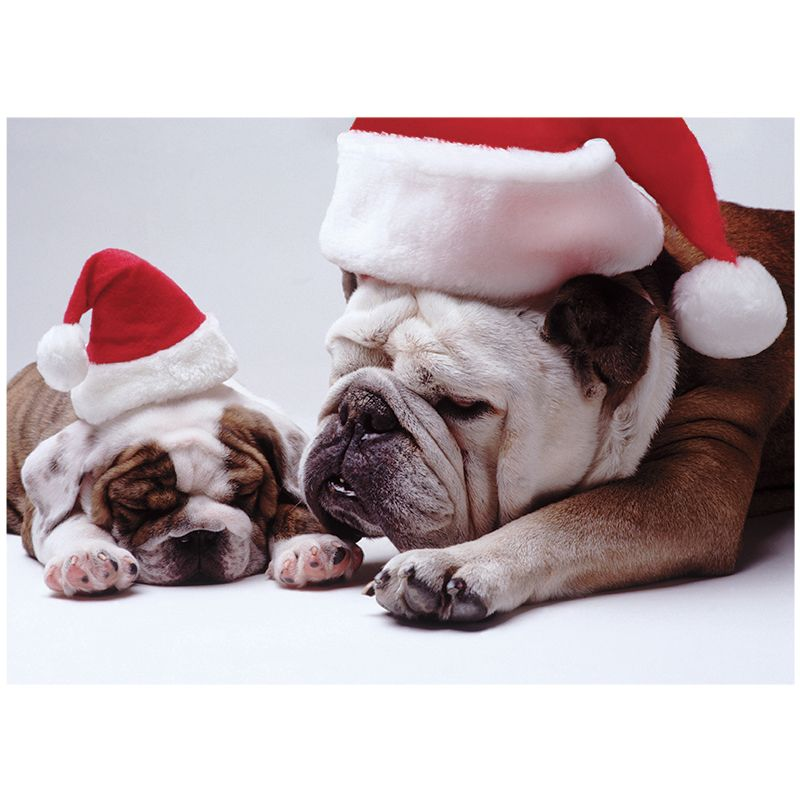 Bulldog Christmas Cards | Christmas | Pinterest | Animals, Dogs and Pets