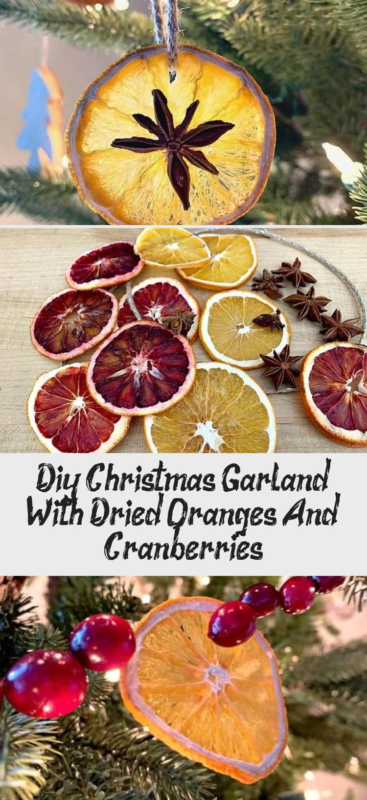 Diy Christmas Garland With Dried Oranges And Cranberries