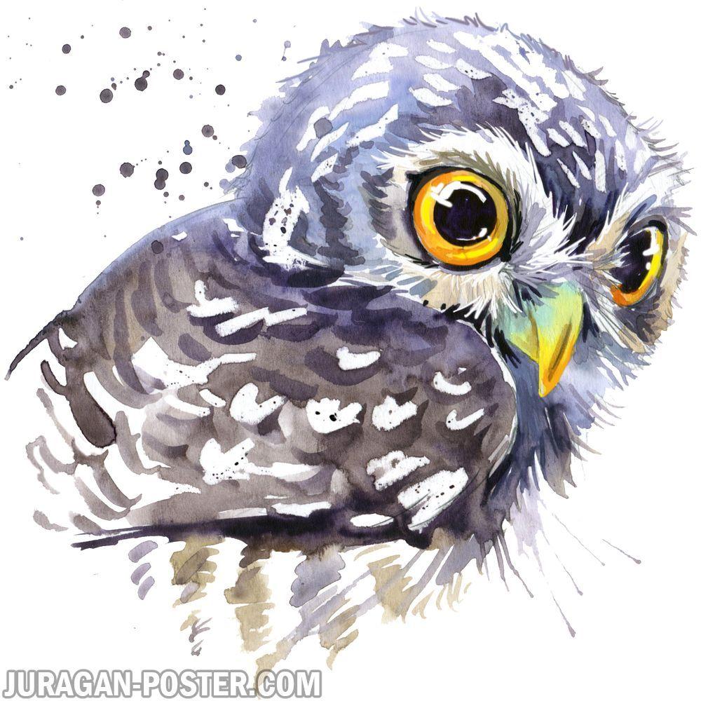Gambar Mewarnai Binatang Burung Pinterest