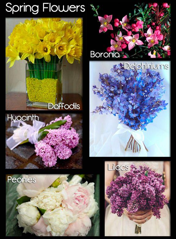 Spring wedding flowers i said yes 3 pinterest spring wedding flowers mightylinksfo