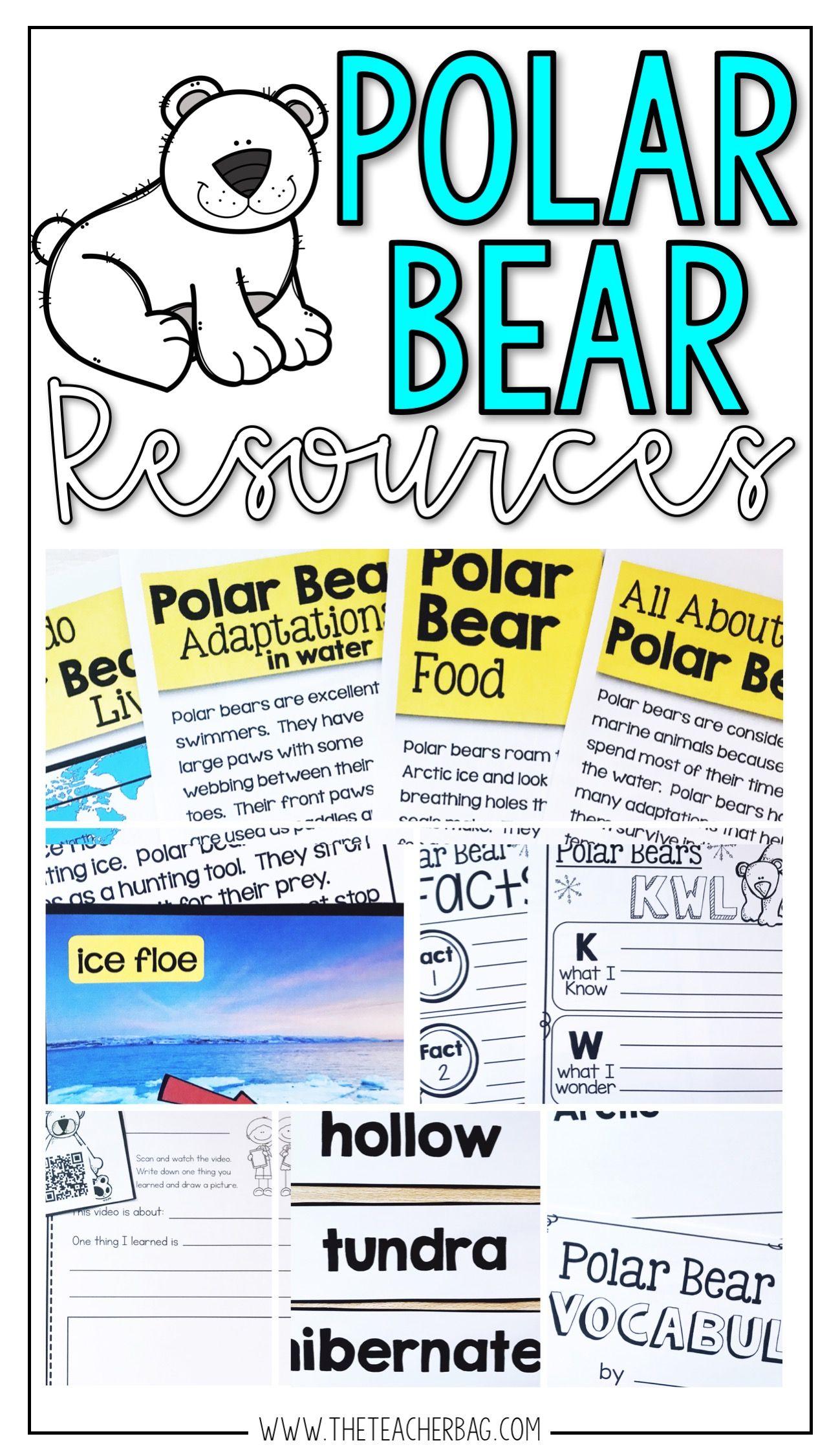 Polar Bear Resources