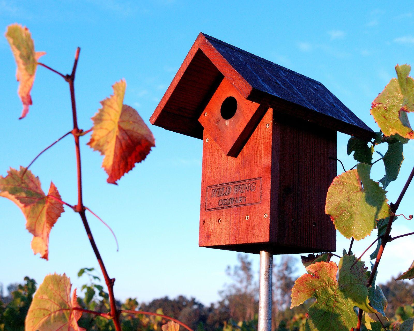 Canihan Winery Birdhouse Bird Houses Bird House Winery