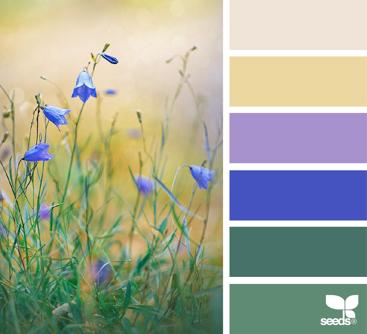 период сдачи цветовая гамма картинки с природой лицевую сторону папки