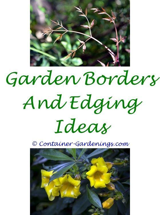 Gargen Back Garden Ideas Ireland Hydroponic Gardening Tips Gargen