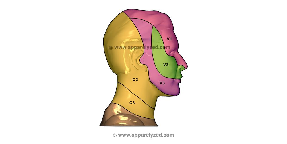 Dermatomes Of The Head Work Related Pinterest Physical Therapy
