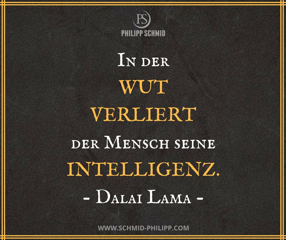 In Der Wut Verliert Der Mensch Seine Intelligenz Dalai