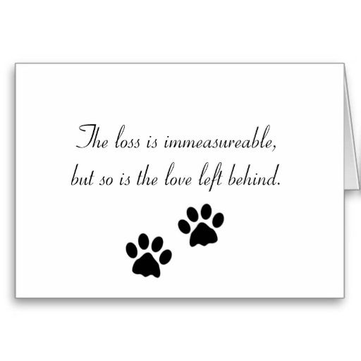 Loss Of Pet Quotes For Dogs: The Loss Is Immeasureable... Sympathy Card