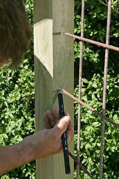 Bygg ett blommande staket! Det är inte bara snyggt och doftar gott, det skyddar mot blåst och insyn också. Se här hur lätt det byggs. #zaunideen
