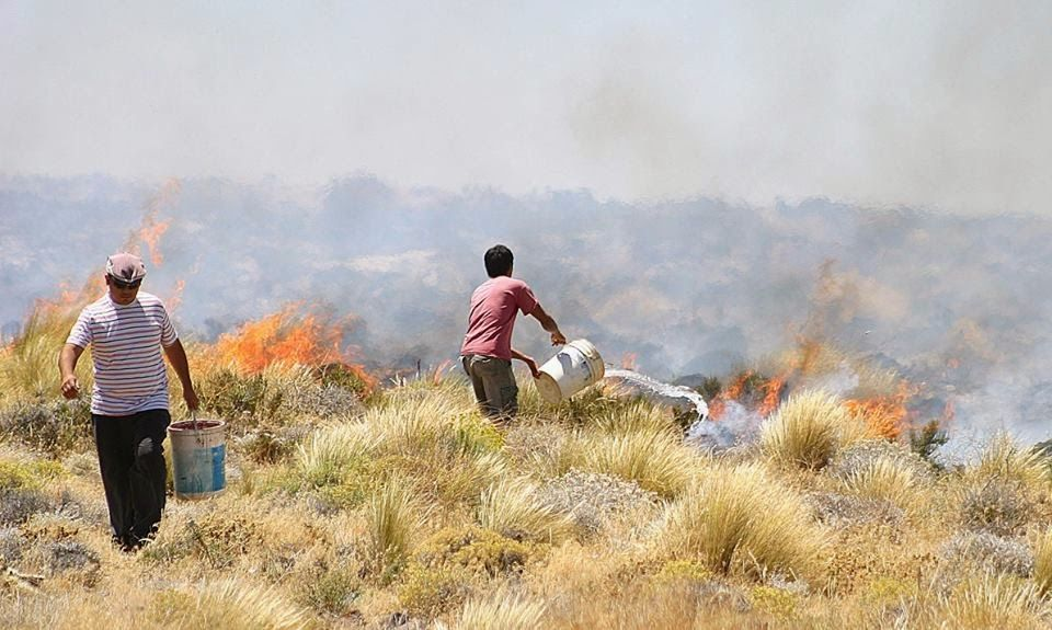 Piedra del Aguila.-: El incendio comenzó en el basural camino lindante