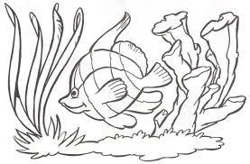 Resultado De Imagen Para Paisaje Marino Para Colorear Paisaje Marino Dibujos Fondo De Mar