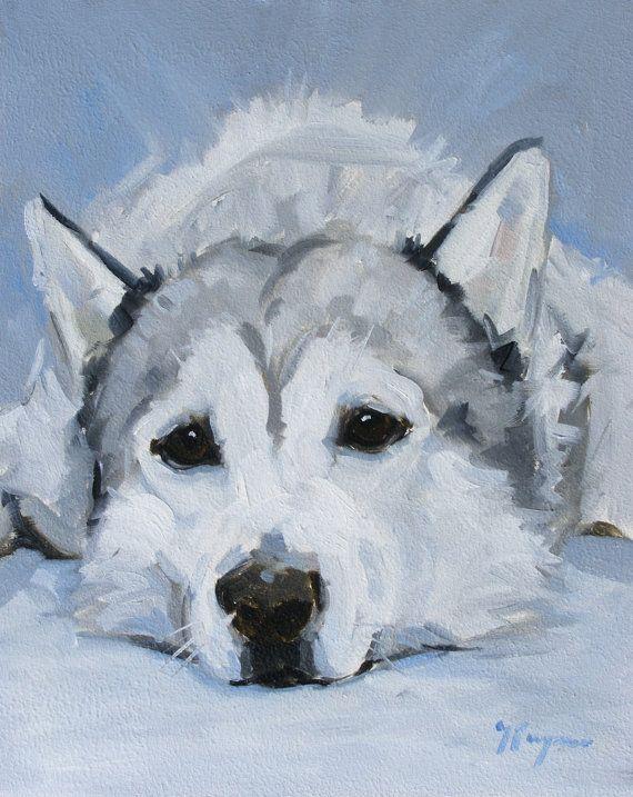 Portrait d'un chien husky sibérien