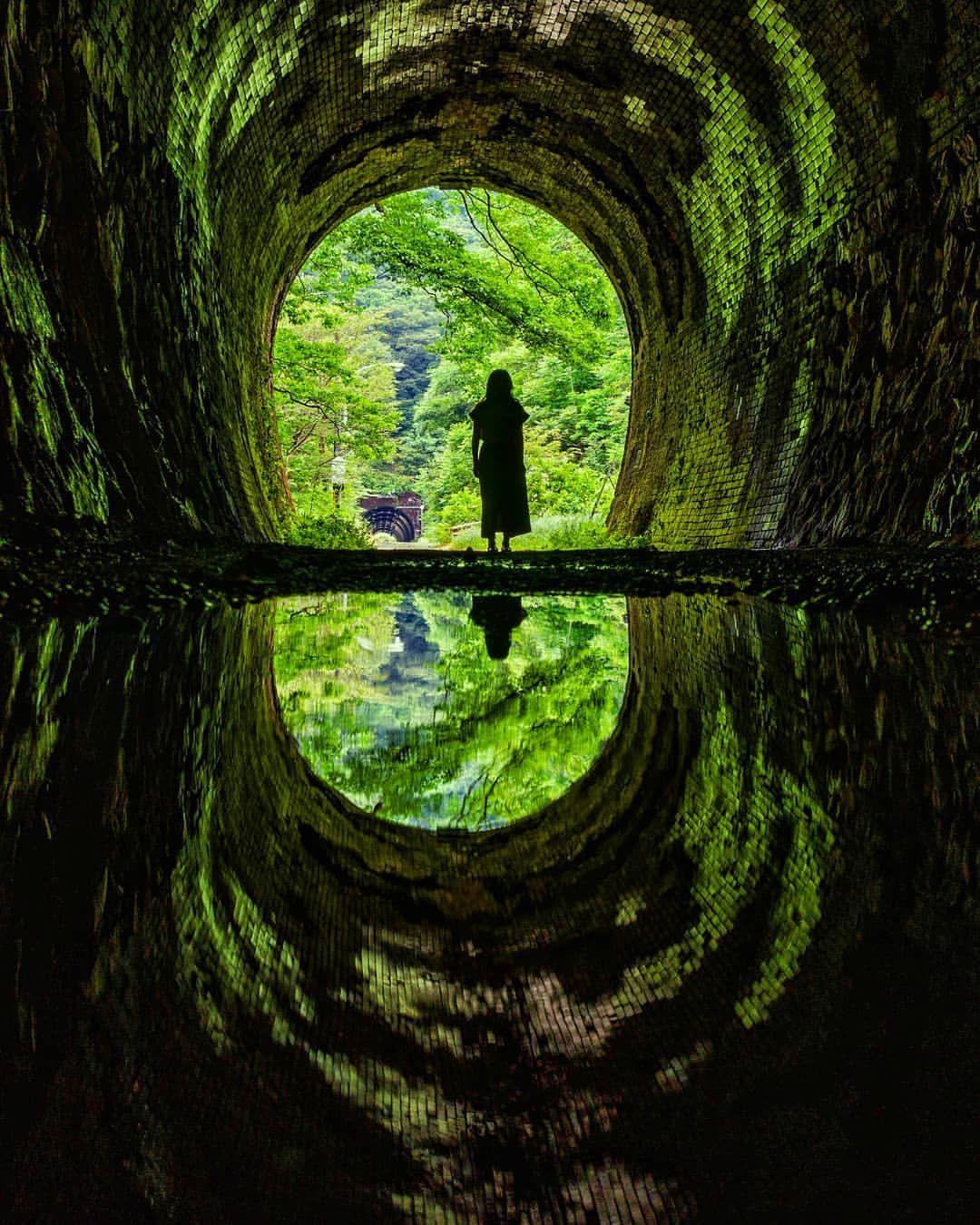 Oo9ma On Instagram 今日は の誕生日でした 娘ちゃんとデート モデルになってもらいました ところでカスって何 今日の景色 水たまり トンネル 小刀根トンネル 廃線跡 北陸本線 柳ケ瀬線 リフレクション キタムラ写真投稿 ニコン倶楽部 Land トンネル