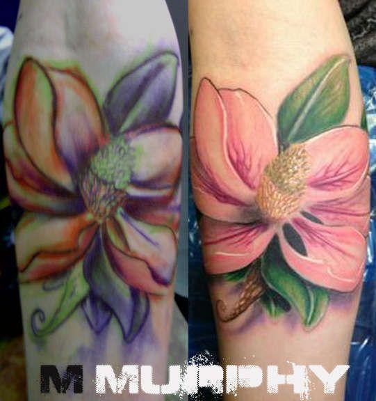 mmurphy:magnolia-flower-magnolia-flower-realistic-girly ...