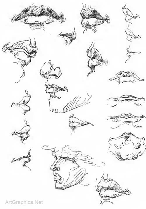 Drawing Ears Eyes Mouth And Nose Page 08 12 Art Book For