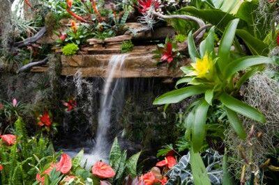 #tropical #garden