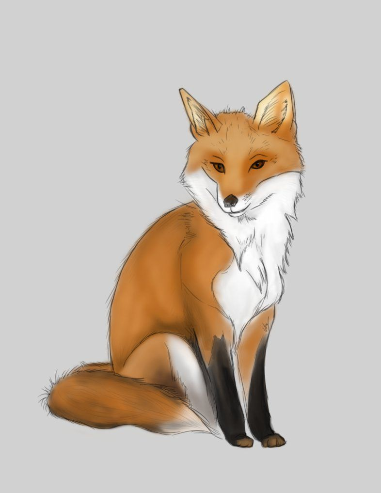 Fox Digital Drawing By Jofox2108 Digital Drawing Drawings Computer Drawing