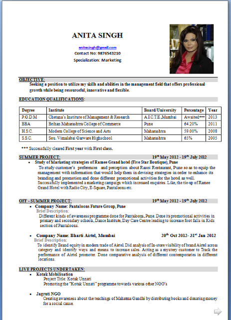 professional cv samples pdf