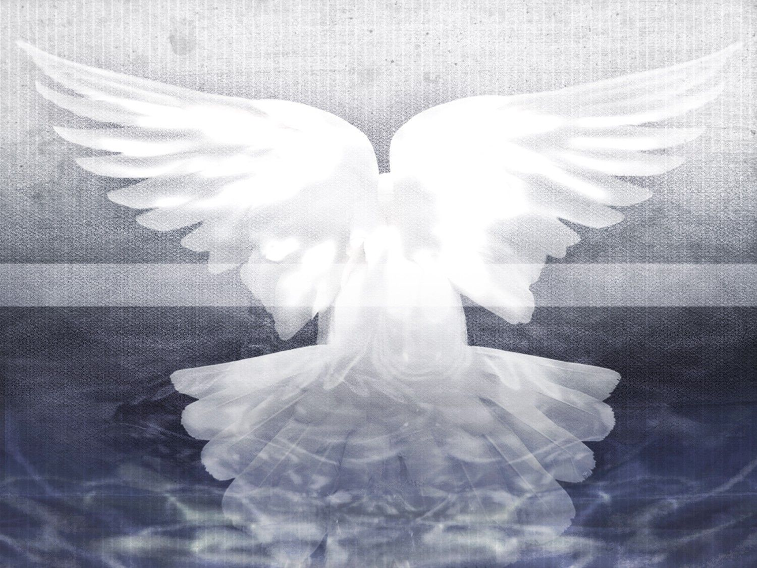 Holy Spirit Dove Worship Background - Your HD Wallpaper #ID71151 ...