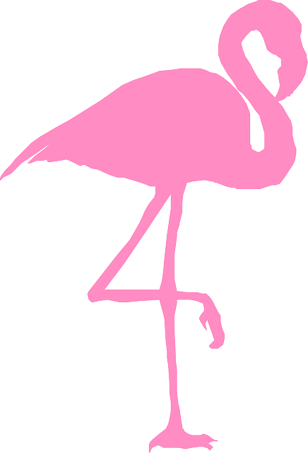 Free Image On Pixabay Flamingo Bird Silhouette Pink