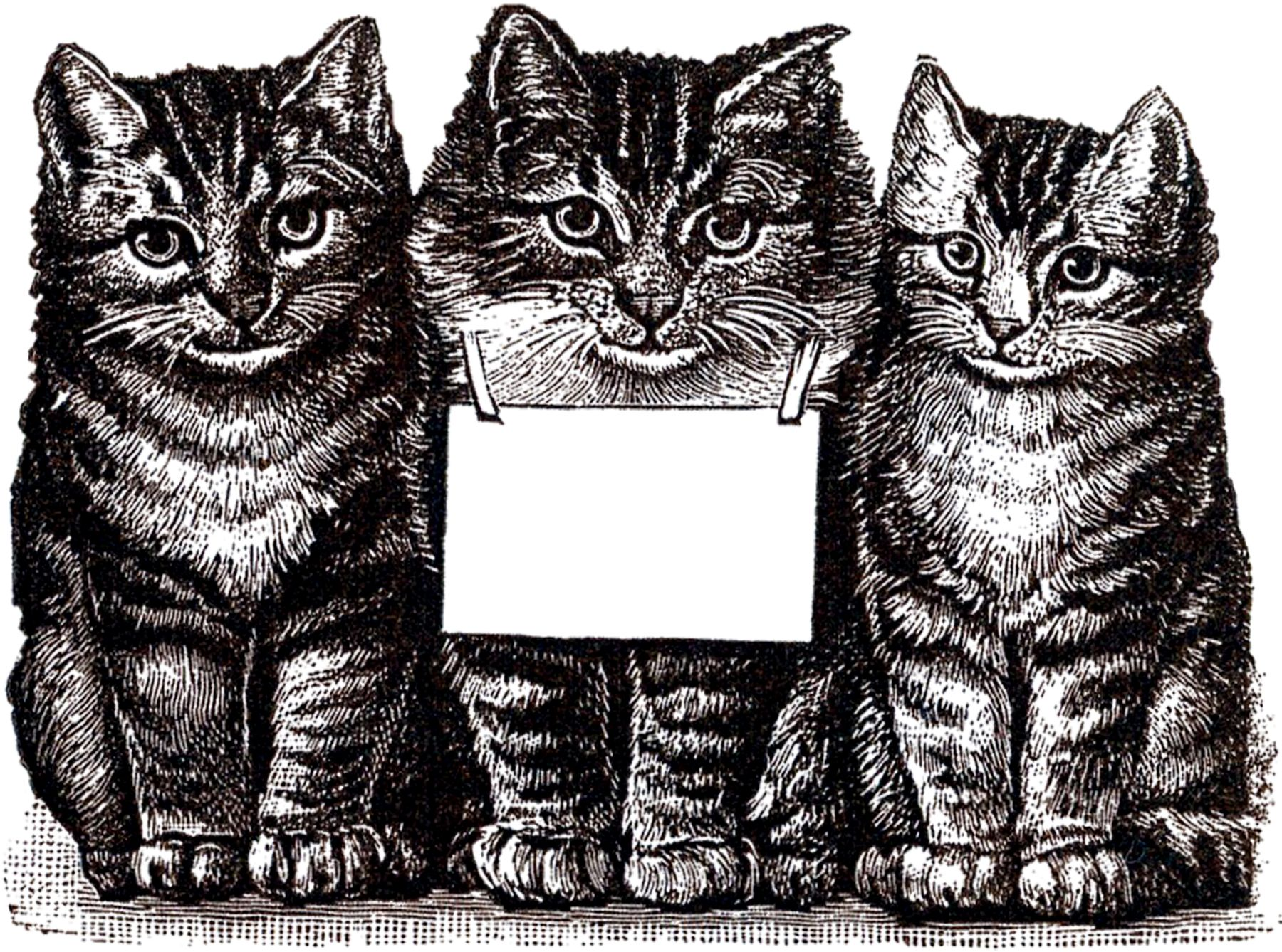 Vintage Clip Art of Cat and Kitten