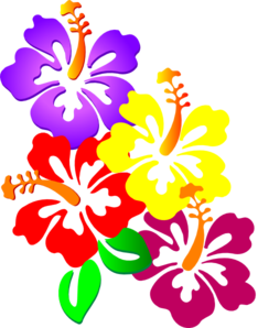 Fiori Hawaiani Disegni.Hibiscus Corner Clip Art Fiori Hawaiani Fiori Fiori Di Carta