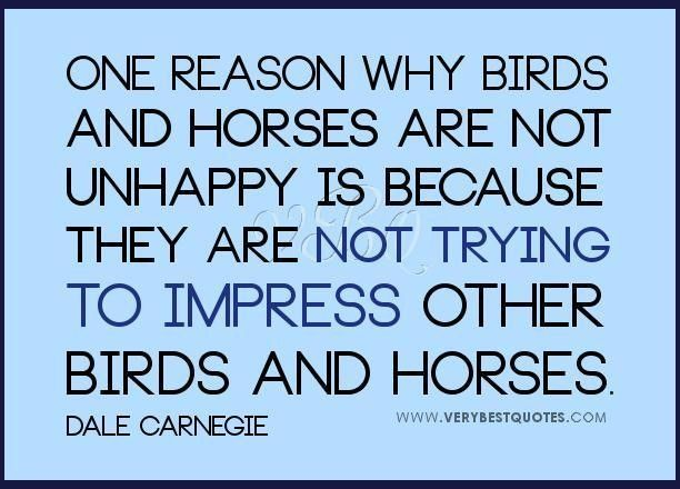 Dale Carnegie Quotes Endearing Impress Others Quotes Dale Carnegie Quotes Not Unhappy Quotes  Dale