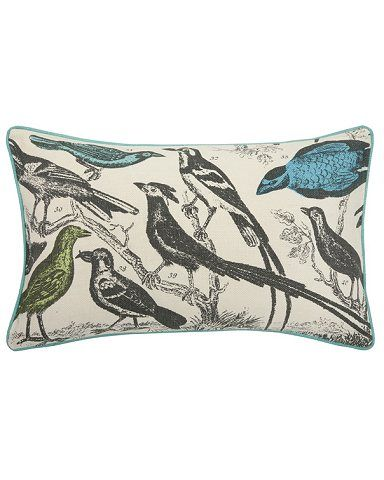 Alice Lane Home Collection » Thomas Paul: Orinthology Pillow