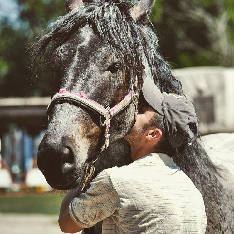 Фото человека коня