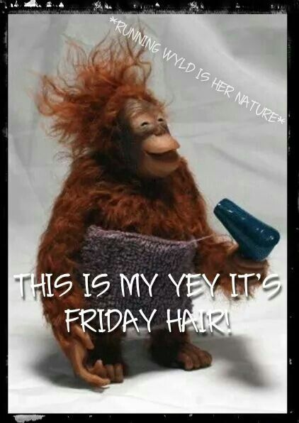Funny Friday Images And Quotes : funny, friday, images, quotes, Follow, Instagram, @hairdoctor321, Morning, Quotes, Funny,, Funny, Pictures,, Friday