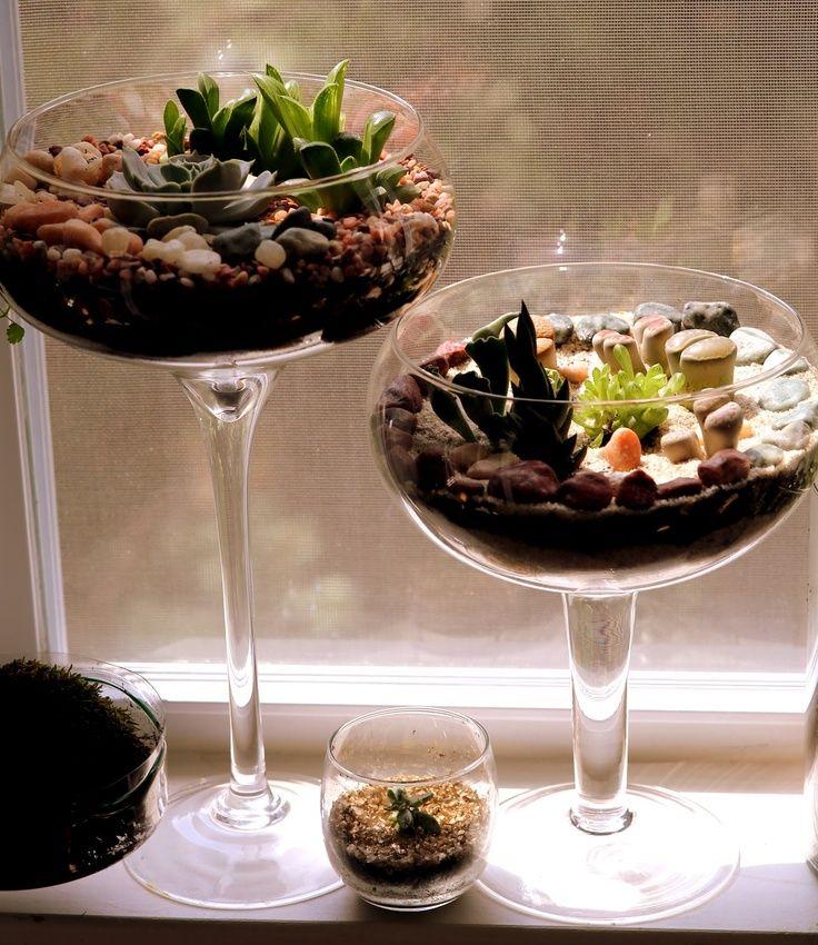 Wine Glass Vases Succulents Succulent Terrarium In A Wine Glass