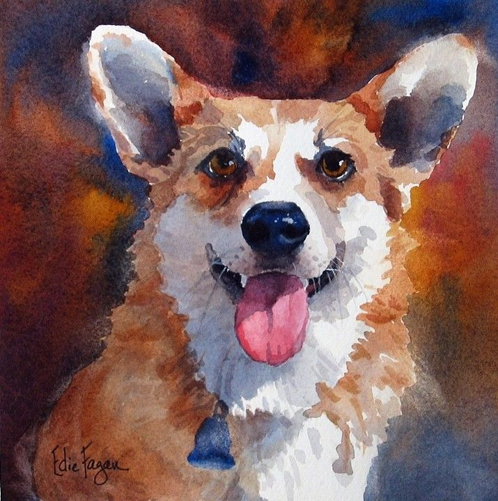 Born In Michigan Ben Pembroke Welsh Corgi Quickly Did What