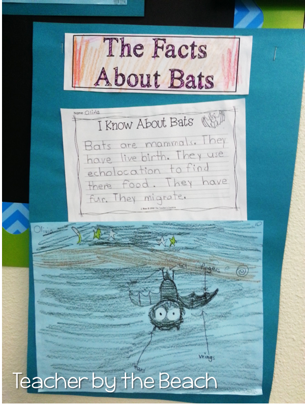 The Teachers' Cauldron: Bat Week: Reading, Writing, and Poetry - freebies included!