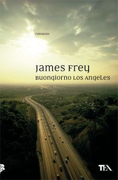 James Frey - Bright Shiny Morning    Best book EVER.