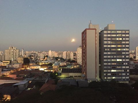 São Paulo- SP- Brasil