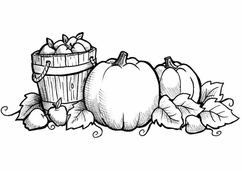 Free Printable Fall Coloring Pages For Kids Homeschool Rhpinterest: Apples And Pumpkins Coloring Pages At Baymontmadison.com