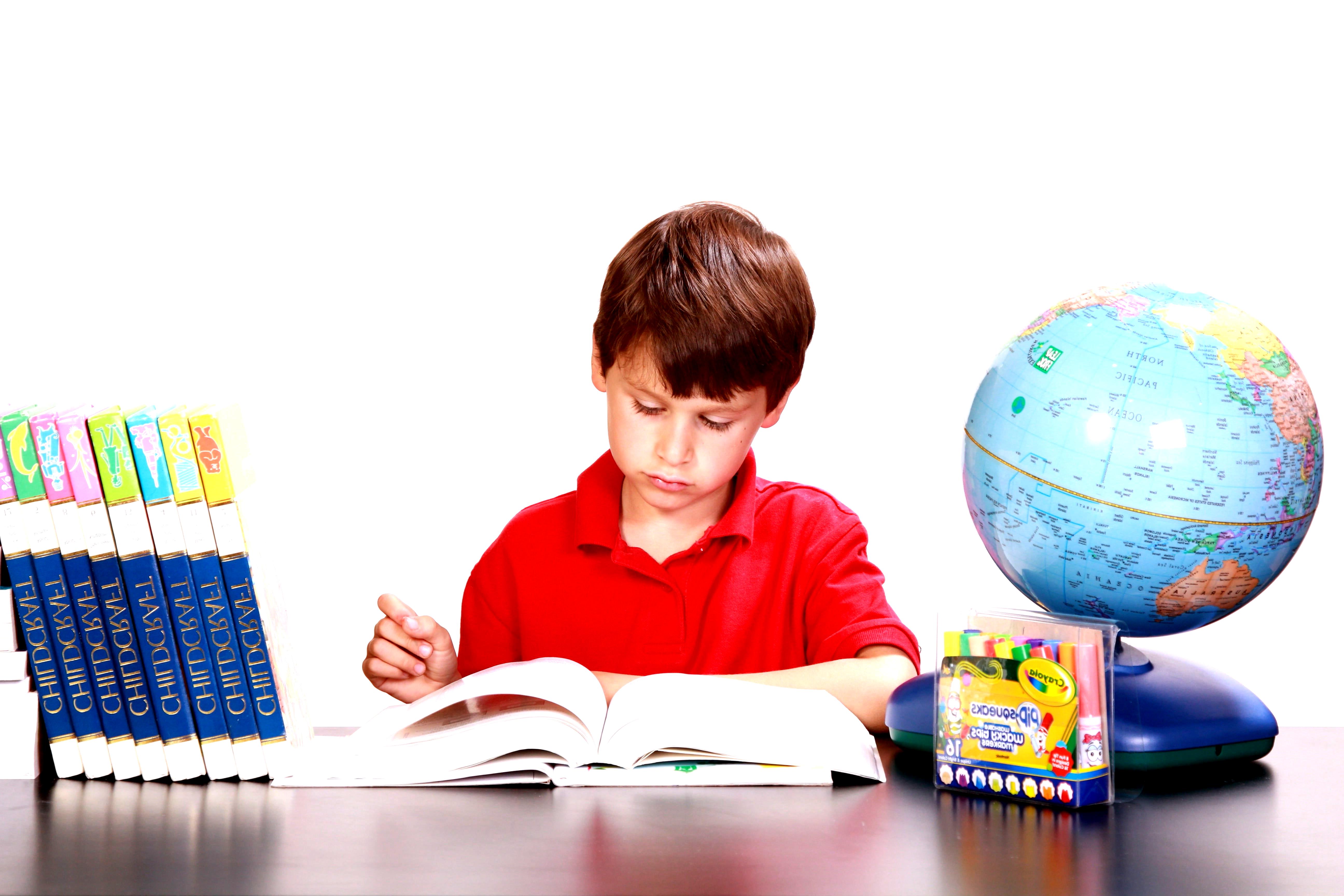 garçon vêtu d'un polo rouge lisant un livre # garçon # lecture # étude # livres #enfant …