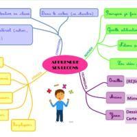 Méthodologie : Apprendre ses leçons (document en pdf: http://ekladata.com/laclassedameline.eklablog.com/perso/outils%20apprendre%20ses%20lecons.pdf  )