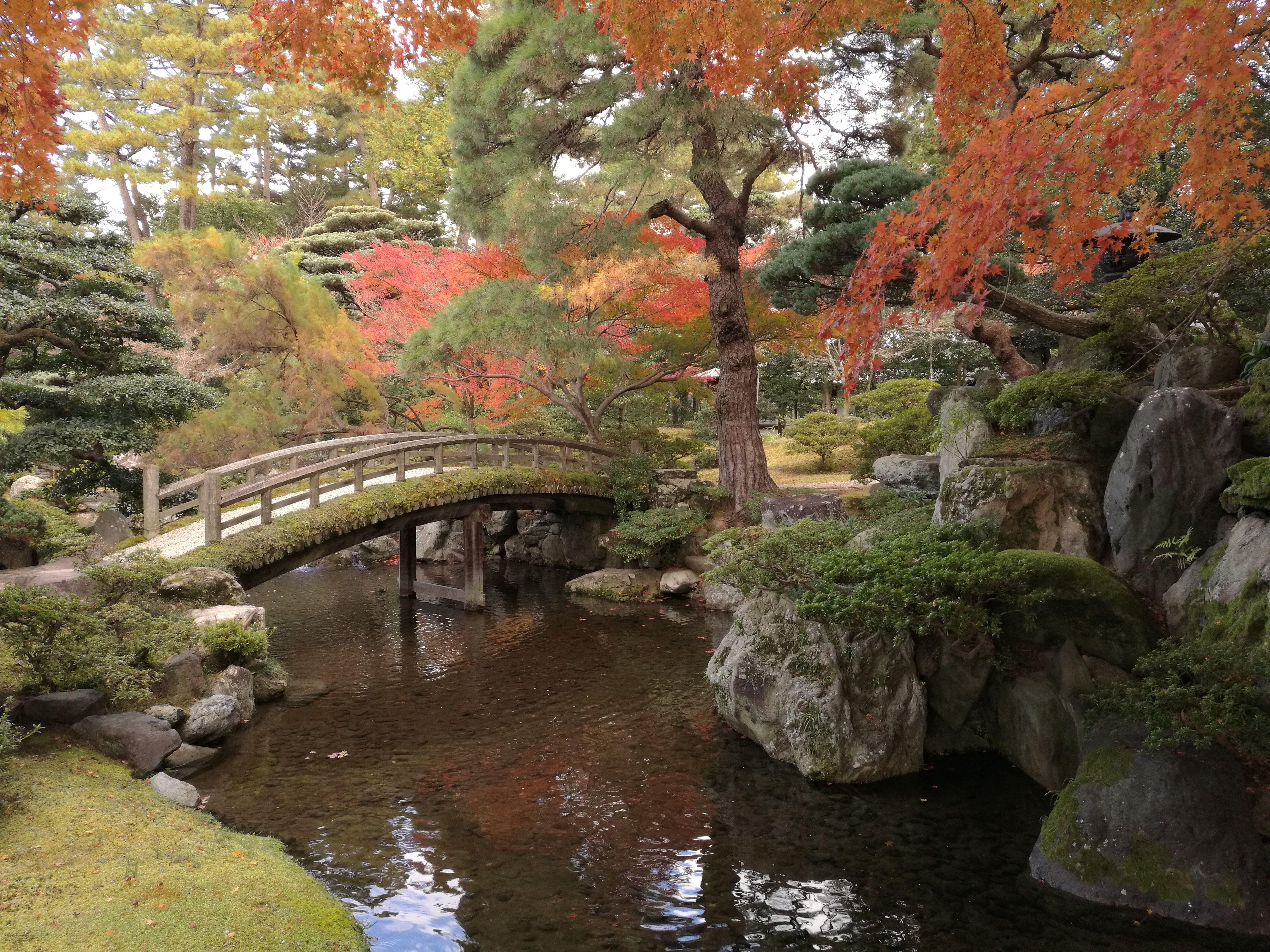 Los colores de Japón en otoño. Parque del Palacio Imperial