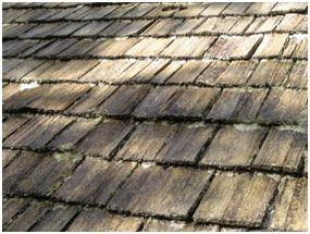 Best Turada Hardwood Shingles For Roofing Siding In Miami Fl 400 x 300
