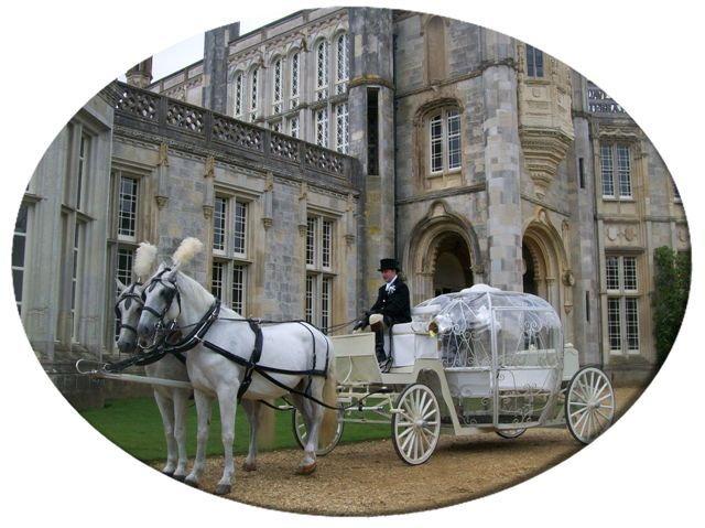 Looking asian carriage wedding