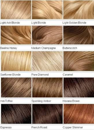 Different Types Of Blonde Highlights Google Search Honey Hair Color Blonde Hair Shades Hair Shades