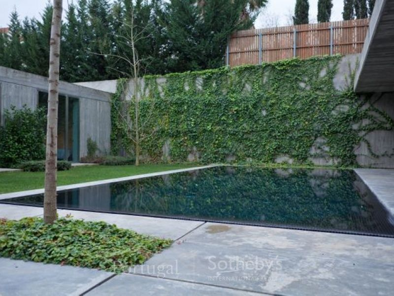 a pool for nature