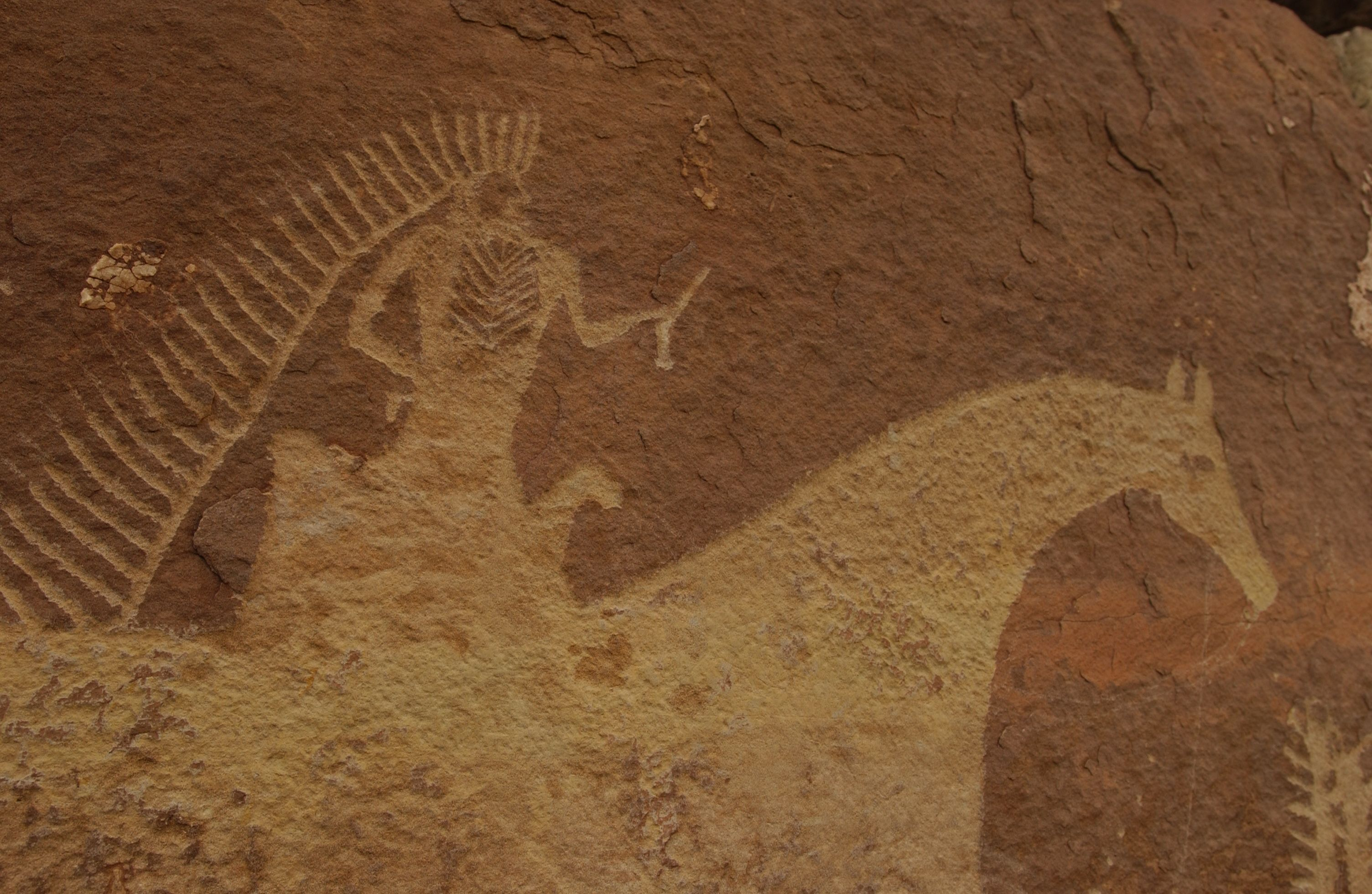 Desolation Canyon petroglyphs