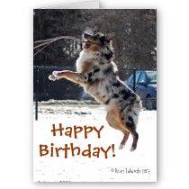 Happy Birthday Leaping Dog Card By Reneefukumoto Dog Birthday Card Australian Shepherd Dog Wedding Sign