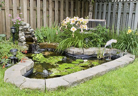 Teich Anlegen: Umfassende Tipps Für Das Eigene Biotop Gibt Ihnen ... Teich Im Garten Anlegen Und Pflegen Nutzliche Tipps Fur Hobby Gartner